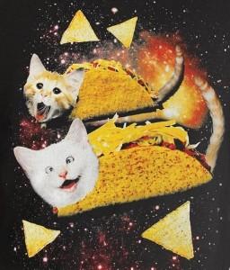 space taco cat